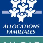 Le Domaine des Pins est agréé Vacaf
