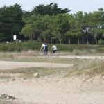Piste cyclable en Vendée