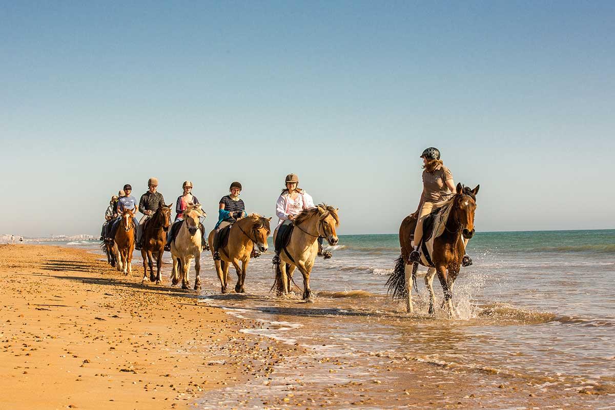 promenade à cheval Saint Hilaire de Riez