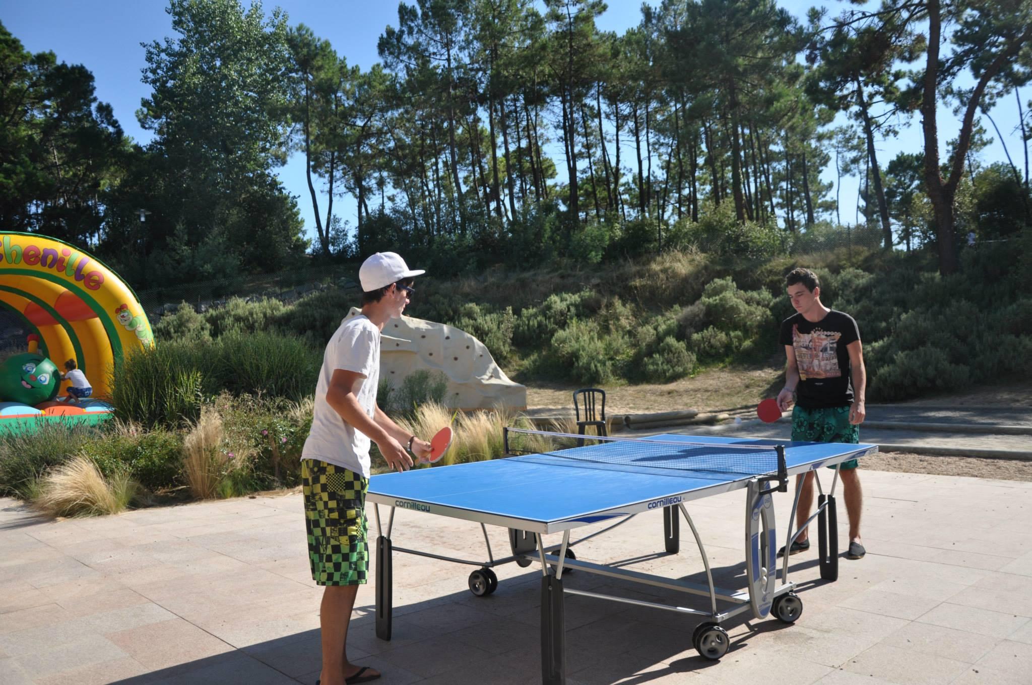 tennis de table en vendée
